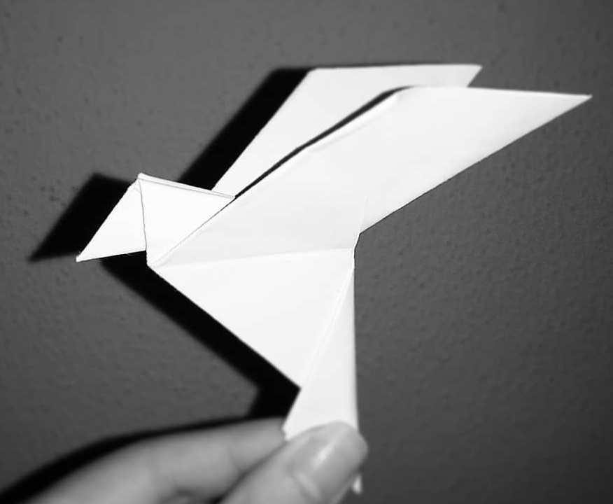 Qué es la papiroflexia
